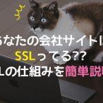 あなたの会社サイトはSSLってる??  SSLの仕組みを簡単説明!